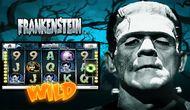 Игровой аппарат Frankenstein от Вулкан