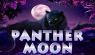 Игровой автомат Лунная Пантера, играть на сайте Вулкан 24