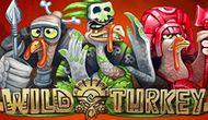 Игровой автомат Wild Turkey играть на деньги в казино Вулкан