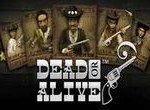 Клуб Вулкан - игровой автомат Dead or Alive