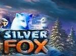 Игровой автомат Silver Fox бесплатно онлайн